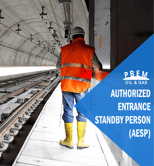 Authorized Entrance Standby Person (AESP)