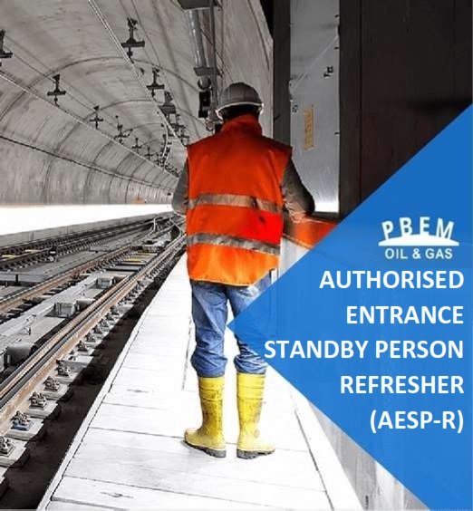 Authorised Entrant & Standby Person  Refresher (AESP-R)